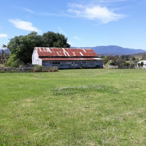 Old shearing shed at Madden's Rise circa 1863. Heritage listed.